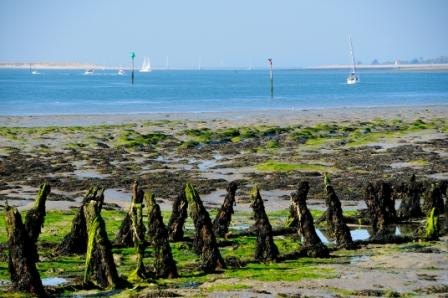 Chichester Harbour - on the England Coast Path
