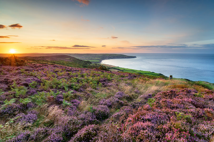 The North York Moors coast - part of the England Coast Path
