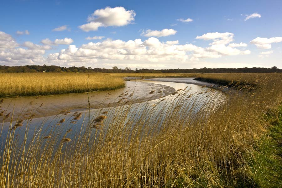 Snape marshes, Suffolk - on the England Coast Path
