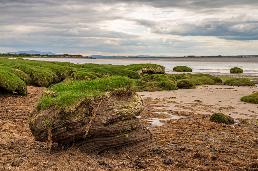 Solway Firth - on the England Coast Path