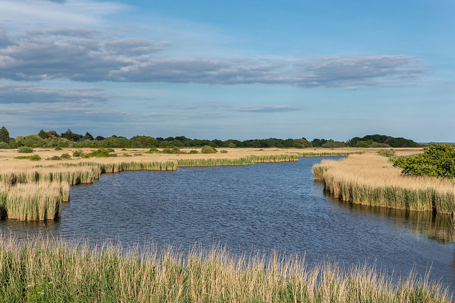 Thorney Island, West Sussex - on the England Coast Path